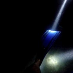Inmersión nocturna 3