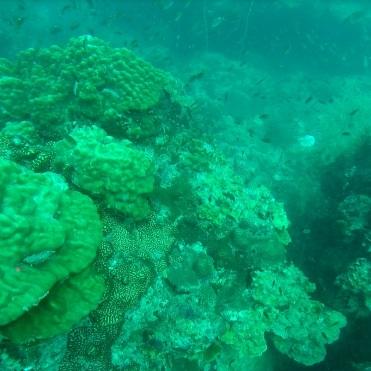 Inmersion profunda 1
