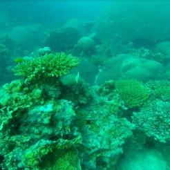 Inmersion profunda 2