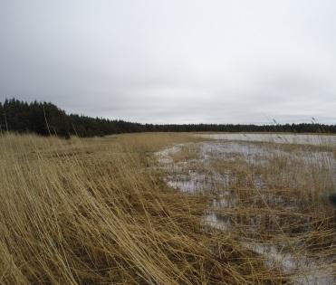Vilsandi National Park