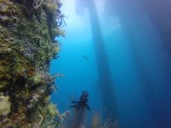Buceo Bali