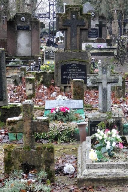 Viejo cementerio Siauliai