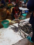 Aquí por ejemplo se ve como la pescadera prepara el pescado para la clienta. Lo primero que hace es darle un tajo en la cabeza para matarlo. No se puede discutir que no es fresco.